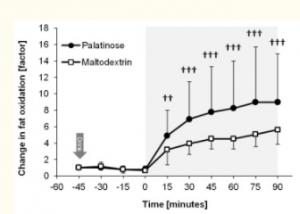 fat-oxidation